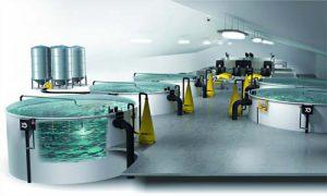 سیستم مدار بسته پرورش ماهی در شهرکرد