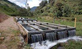 انواع سیستم مدار بسته پرورش ماهی در یاسوج