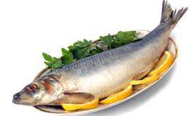 سایت خرید ماهی قزل آلا