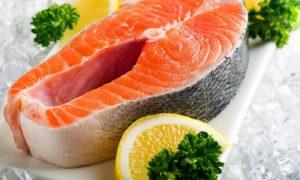 فروش عمده ماهی قزل آلا سالمون