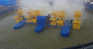 سیستم مدار بسته پرورش ماهی قزل الا چقدر هزینه دارد؟
