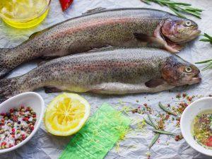 ماهی قزل آلا رنگین کمان در شهر اصفهان