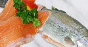 فروش فیله ماهی قزل آلا تازه و منجمد