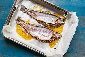 فروش عمده ماهی قزل آلا رنگین کمان در مشهد