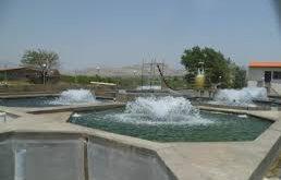 هزینه سیستم مدار بسته پرورش ماهی قزل آلا در ایران