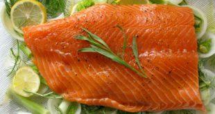 خرید ماهی سالمون تازه به صورت عمده